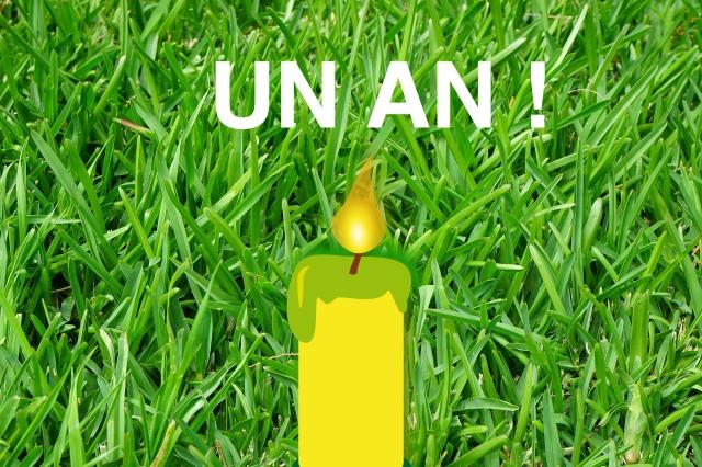anniversaire blog copie.jpg