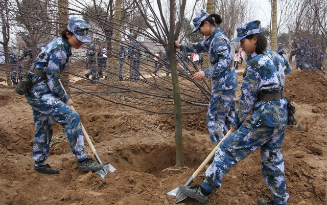reforestation-armee-Chine-1024x642.jpg